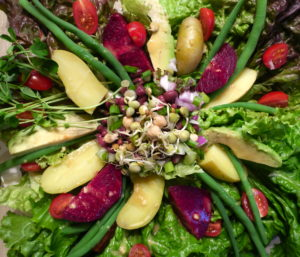 Salad Nicoise Vegan Style